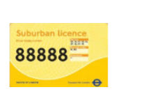 Yellow licence 22